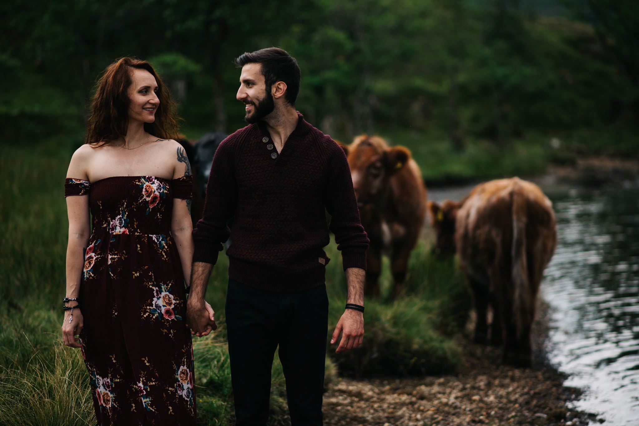 couple in field with cows
