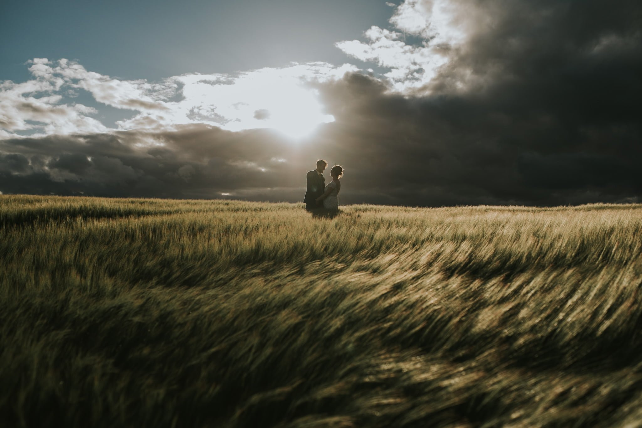 couple backlit in field of barley